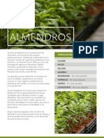 Vivero Productora_arg dde 1995 venta-ALMENDROS