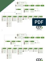 Organigramme de la CDG