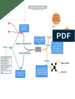 mapa mental-modelos de datos