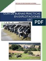 guiadepracticasenexplotacioneslecheras-180511002057