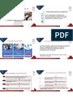 Apta Plantilla PDF