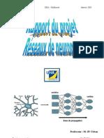 Projet Neuromimetique[1]