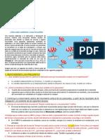 EVALUACION DIAGNOSTICA  5to 2021 (1).pdf BTJ