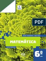 6 Ano Matematica Acerta Brasil PROFESSOR