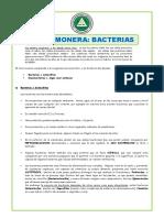 El-Reino-Monera-Bacterias-para-Segundo-de-Secundaria