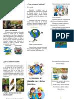 tripticooo educacion ambiental