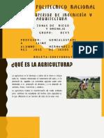 Agricultura prehistorica