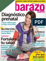 Embarazo Sano 1