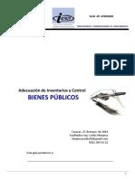 234386913 Guia Adecuacion de Inventarios Control Bienes PDF