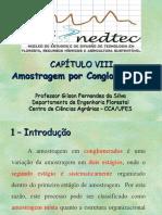 CapituloVIII_Amostragem_Conglomerados