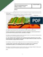 Ficha Geologia Rochas Magmáticas (resolvido por aluno)