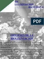 Introducción a la lixiviación bacteriana