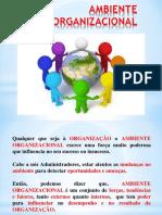 Slides_Ambiente_Organizacional