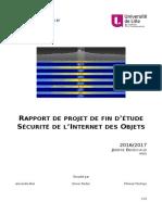 Denechaud_Rapport