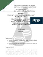 report 1 fico5