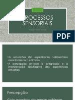 Processos Sensoriais