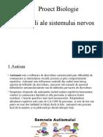 3-Boli-ale-sistemului-nervos (1)