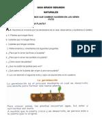 GUIA NATURALES SEGUNDO PERIODO 2 - copia
