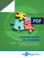 Cooperativa de Crédito O que É e  Como Funciona