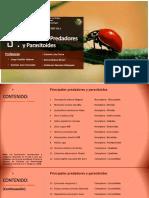 Práctica N°3 Principales Predadores y Parasitoides (1)
