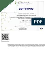 Auditoria_Baseada_em_Risco___Etapas_I_e_II___Parte_Teórica-Certificado___ABR_Etapa_I_24338