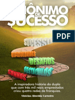 Sinonimo de Sucesso_ O GPS Do Empreendedor - Vinicius Almeida