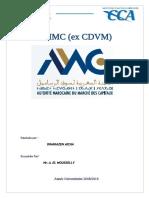 Rapport AMMC (Ex. CDVM)