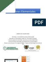 Lesiones Elementales 1