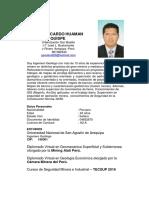 CV DAVID HUAMAN Q Doc