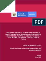 06 18 20 Lineamientos PAPSIVI ET (1)