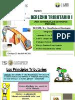 VULNERABILIDAD DE LOS PRINCIPIOS TRIBUTARIOS. oK