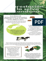 Selva Lacandona_DeliaPaolaSantiagoLuna