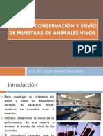 4 COLECTA, CONSERVACIÓN Y ENVIO DE MUESTRAS1