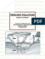 mercury pollution ( indian scenario)