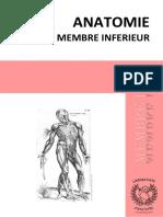 Membre-inf-2.0