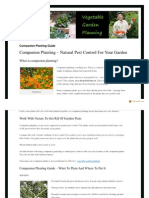 Companion Planting for Vegetable Gardens