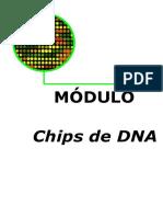 Chips de DNA