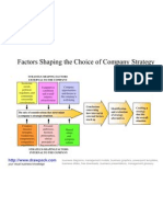 Choice of Company Strategy Diagram