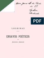 1878 - Lágrimas Agustina Andrade