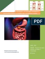 UFCD_7212_Os Sistemas Do Corpo Humano_os Sistemas Urinário e Gastrointestinal, Os Órgãos Dos Sentidos e a Pele_índice