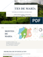 Montes de Maria Presentacion