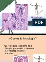 Histologadelsistema Oseo