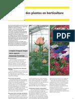 Zierpflanzen_f_klein_03