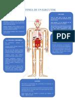 Anatomia de Un Ejecutor