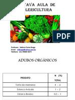 OITAVA AULA  DE OLERICULTURA  (3)