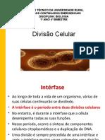 BIOLOGIA_divisocelular_17-03_21