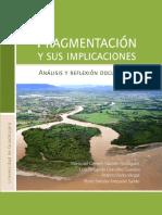 2015 - Fragmentación y sus implicaciones. Análisis y reflexión documental
