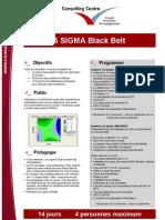 6_sigma_black_belt