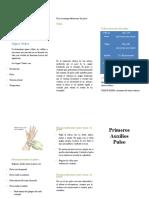 Charla-Nº-5-Primeros-Auxilios-Signos-Vitales-Pulso-