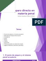 Amparo Directo en Materia Penal Carlos Ponce